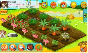 papaya farm tablet android app