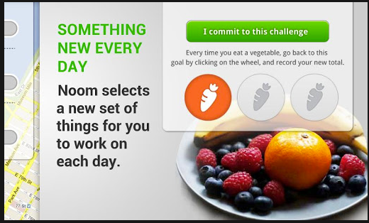 Noom weight loss app free